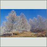 Bild 1 zum Bildarchiv Landschaft II