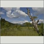 Bild 37 zum Bildarchiv Landschaft