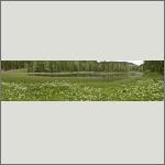 Bild 40 zum Bildarchiv Landschaft