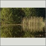 Bild 36 zum Bildarchiv Landschaft