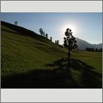 Bild 154 zum Bildarchiv Landschaft