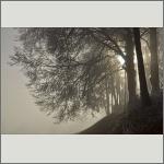 Bild 10 zum Bildarchiv Landschaft II