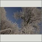 Bild 4 zum Bildarchiv Landschaft II
