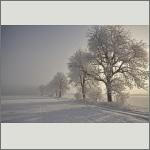 Bild 12 zum Bildarchiv Landschaft II