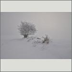 Bild 8 zum Bildarchiv Landschaft II