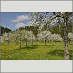 Bild 3 zum Bildarchiv Landschaft