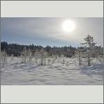 Bild 6 zum Bildarchiv Landschaft II