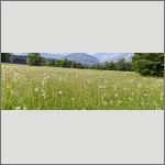 Bild 22 zum Bildarchiv Landschaft I
