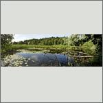 Bild 10 zum Bildarchiv Landschaft I