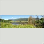 Bild 5 zum Bildarchiv Landschaft I