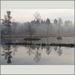 Bild 52 zum Bildarchiv Landschaft II