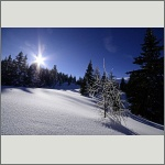 Bild 30 zum Bildarchiv Landschaft II