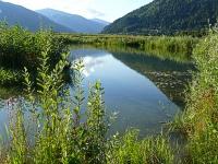 Bild Laichschongebiet Ossiacher See