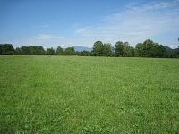 Bild Blick über das Tallacher Feld
