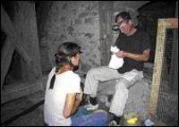 Bild Elisabeth Schober und Ulrich Hüttmeir bei Untersuchungen an der Kleinen Hufeisennase