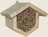 Bild Wildbienenwabe