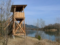 Bild Birdwatchingturm in Neudenstein