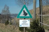Bild Bitte um nächtlichen Fahrverzicht entlang einer Amphibienwanderstrecke