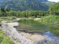 Bild Neu geschaffenes Gewässer bei Kleblach-Lind