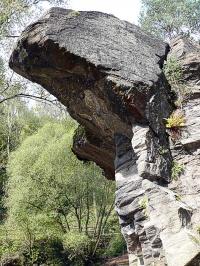 Bild Örtliches Naturdenkmal Entenschnabel (Frantschach-St. Gertraud, Hinterwölch)