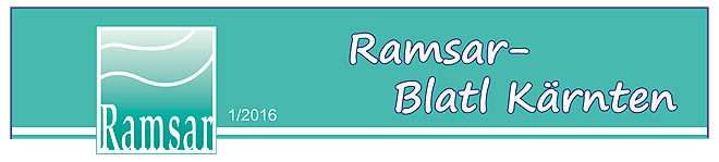 Bild zum Weblog 174