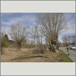 Bild 9 zum Block 176