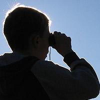 Bild zum Weblog-Eintrag 209