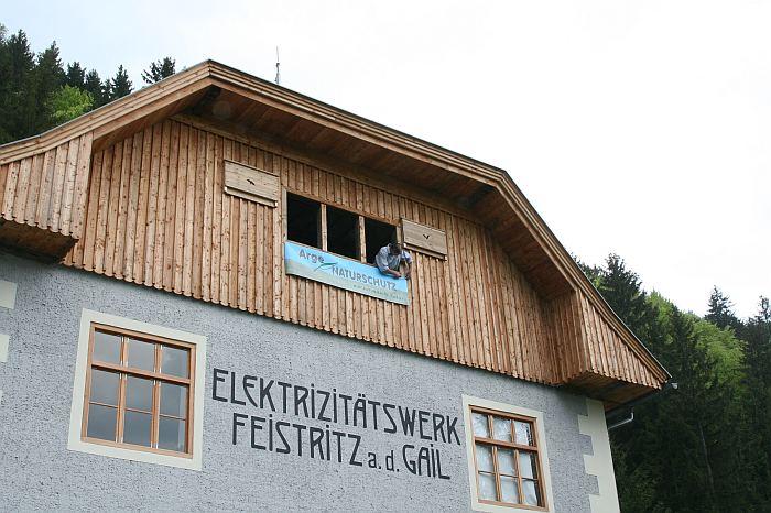 Weblog Das Haus der Fledermäuse