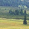 Bild zum Weblog-Eintrag 74